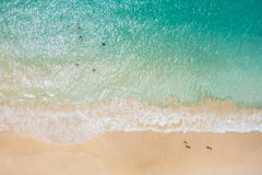 Widok z lotu ptaka Santa Maria plaża w Sal wyspy przylądku Verde, Cabo - fotografia royalty free