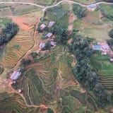 Widok z lotu ptaka Sapa ryż paszteciki zdjęcie royalty free