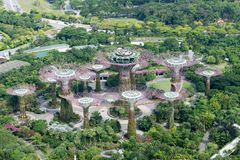Widok z lotu ptaka Singapore uprawia ogródek zatoką Fotografia Stock