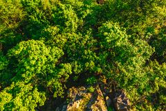 widok z lotu ptaka skały i las Fotografia Royalty Free