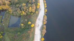 Widok z lotu ptaka staw w lesie, jesień czas Natura, krajobraz, widok z lotu ptaka las i staw, jesień Obraz Royalty Free