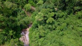 Widok Z Lotu Ptaka turyści Jedzie na Zipline lub baldachim arkanie Adrenaliny przygoda na wakacje zdjęcie wideo