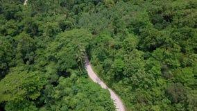 Widok Z Lotu Ptaka turyści Jedzie na Zipline lub baldachim arkanie Adrenaliny przygoda na wakacje zbiory