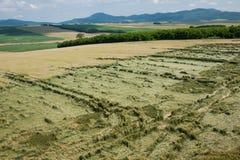 Widok z lotu ptaka uszkadzający pogodowym zjawiskiem kukurydzany pole Zdjęcia Stock