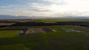 Widok z lotu ptaka w rolnictwa polu przy zmierzchem zbiory