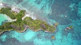 Widok Z Lotu Ptaka wapień rafa w Raja Ampat i wyspa zbiory wideo