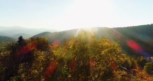 Widok z lotu ptaka wschód słońca, zmierzch las zbiory wideo