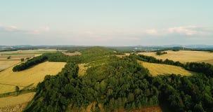 Widok z lotu ptaka wschód słońca, zmierzch las zbiory