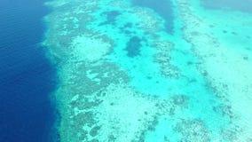 Widok Z Lotu Ptaka Wspaniała rafa koralowa w Indonezja zbiory wideo