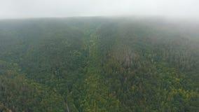 Widok z lotu ptaka wzgórza w mgle zdjęcie wideo
