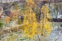 Widok z lotu ptaka zakrywający pierwszy śniegiem miastowy park obrazy stock