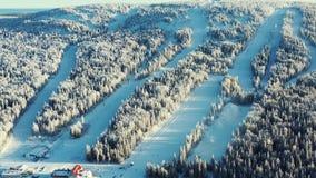 Widok z lotu ptaka zamarznięty las w zimie i narcie tropi przeciw niebieskiemu niebu footage Piękny zimy landscape zbiory