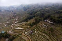 Widok z lotu ptaka ziele? tarasowa? ry?owych pola i budynek na dolinie przy kota kota wiosk? w Sapa, fotografia royalty free