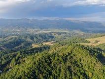 Widok z lotu ptaka zieleniści wzgórza z drzewami w Napy dolinie zdjęcie royalty free
