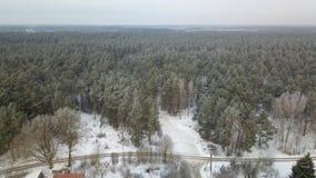 Widok z lotu ptaka zima marznący las zakrywający w śniegu Obrazy Stock