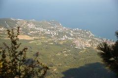 Widok z wierzchu góry Petri Obraz Stock