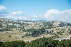 Widok z wierzchu góry Petri Fotografia Stock