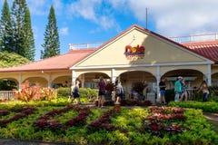 Widok zasiłek dla bezrobotnych Ananasowa plantacja w Wahiawa, wycieczki turysycznej miejsce przeznaczenia zdjęcie royalty free