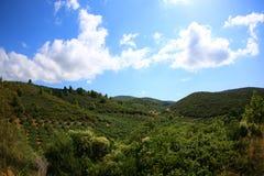 Widok zieleni wzgórza Sithonia w Grecja i niebieskim niebie zdjęcia royalty free