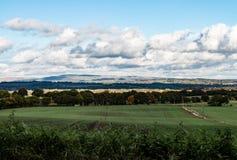 Widok zimy wzgórze zdjęcia royalty free