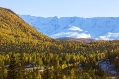 Widoki śnieżne granie Altai góry w Altai republice Zdjęcia Royalty Free