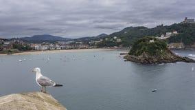Widoki conche plaża Obrazy Royalty Free