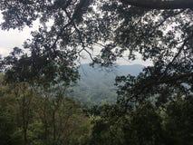 Widoki górscy w dżungli obrazy royalty free