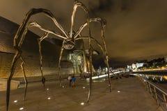 Widoki guggenheim muzeum w Bilbao Zdjęcie Stock