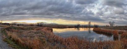 Widoki Josh's Stawowa chodząca ścieżka, Odbija zmierzch w Broomfield Kolorado otaczający ożypałkami, równiny i Skalistej góry l zdjęcie stock