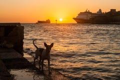 Widoki wokoło Curacao wyspy karaibskiej zdjęcia royalty free