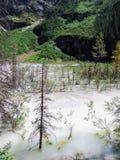 Widoki wycieczkuje wokoło śladu, równiny sześć lodowów, Jeziornego Agnes, Lustrzanego jeziora i Dużego ula Jeziornego Louise, Lak Obraz Stock