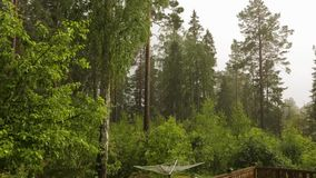 Widoku deszcz z gradem skalisty natura krajobraz w lasowych wysokości zieleni sosnach na grzmotu nieba tle zdjęcie wideo