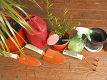 Widoku hobby ulubiony horticulture Obraz Royalty Free