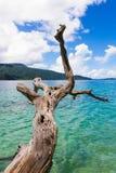Widoku kai podróży Thailand natury piaska krajobrazowych dennych chmur piękny wakacje relaksuje turkusowego raj wody nieba błękit fotografia royalty free