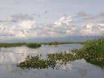 Widoku odbicie od Inle jeziora Myanmar Obrazy Royalty Free