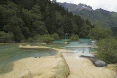 Widoku puszek dolina z colourful stawami obraz royalty free