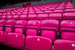 widowni krzeseł menchie obrazy stock