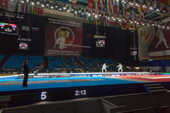Widzowie i atlety na mistrzostwie świat w fechtunku Zdjęcia Stock