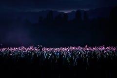 Widzowie przy koncertem przy nocą Fotografia Stock