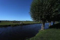 Wieś Holandia, jezioro i drzewa, fotografia royalty free