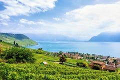 Wieś Lavaux winnicy Tarasowy wycieczkuje ślad Szwajcaria Fotografia Royalty Free