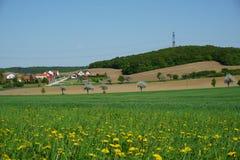 Wieś, mała wioska, kwitnąca dandelion łąka, wiosna krajobraz Obrazy Royalty Free
