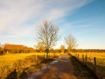Wieś pasa ruchu pola niebieskiego nieba pola ogołacają drzewa Zdjęcia Stock