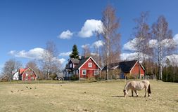 wieś szwedzi idylliczni krajobrazowi Obraz Stock