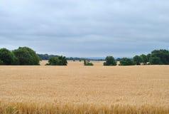 Wieś w Anglia obraz royalty free