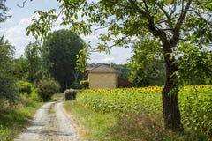 Wieś w Dordogne Dolinny Perigord Noir Francja zdjęcie royalty free