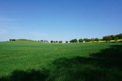 Wieś, z zieloną łąką i rapeseed polem Fotografia Stock