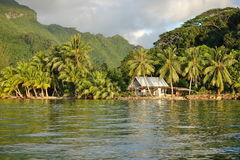 Wieśniaków domowi i kokosowi drzewa Francuski Polynesia zdjęcia stock