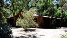 Wieśniak zaniechana kabina w drewnach zbiory