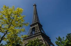 Wieża Eifla i koloru żółtego drzewo, Paryż, Francja Obraz Royalty Free